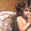 Splinters of an Angel