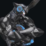 SpaiR-Prime