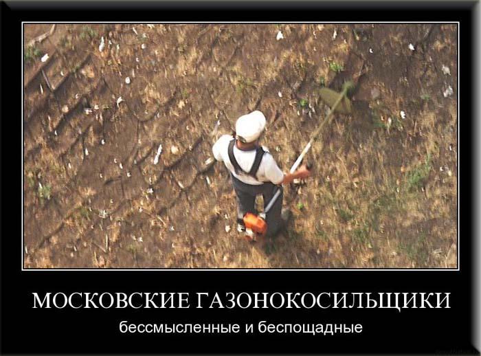 post-1666-1282138437.jpg