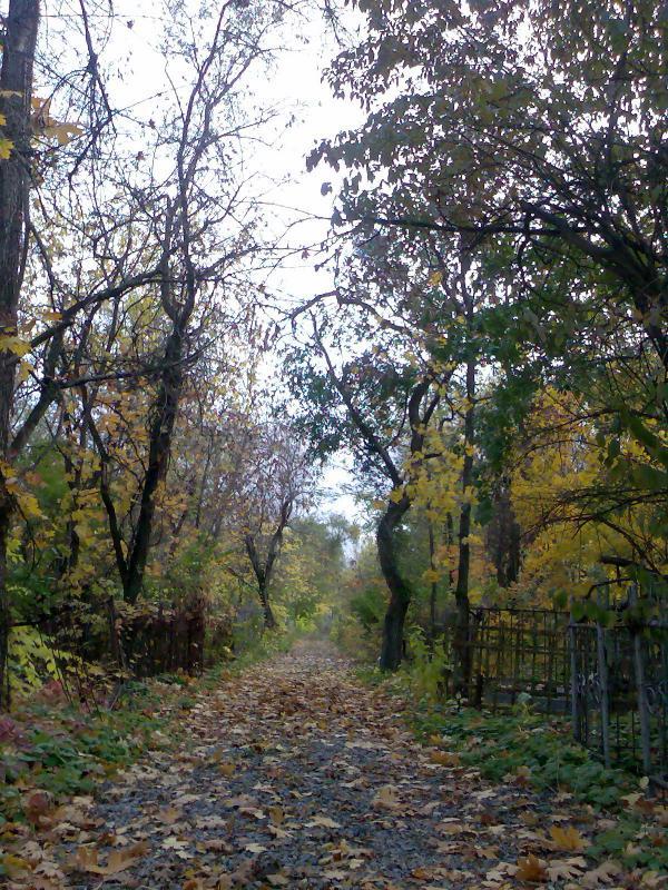 Кладбище__2_.jpg
